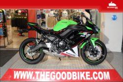 Kawasaki Ninja650KRT Perf 2021 green - Sport / Sport tour